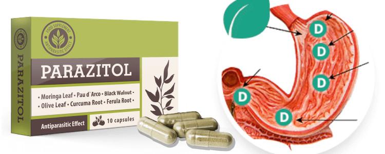 Pot cumpăra un producător într-o farmacie sau online Parazitol?